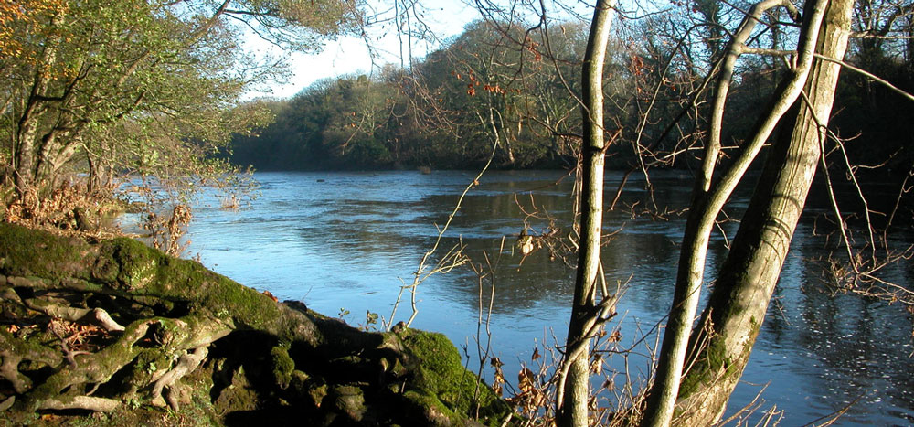 Stockton Angling - River Tees